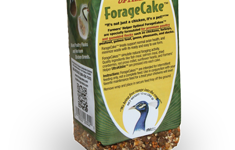 13 oz. Optimal ForageCake™